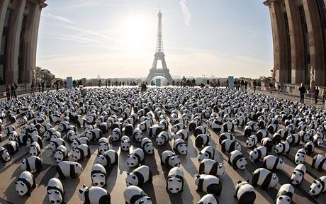 pandas-in-paris