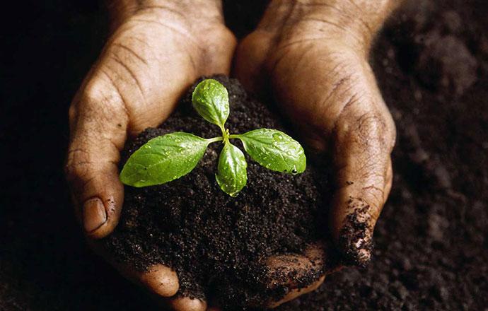 programma-di-lead-nurturing.jpg