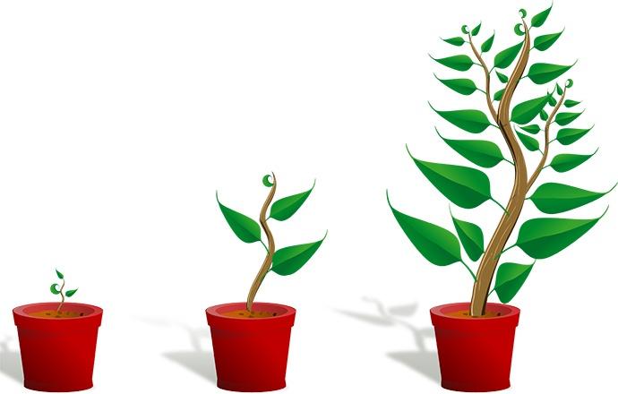 marketing-automation-lead-nurturing